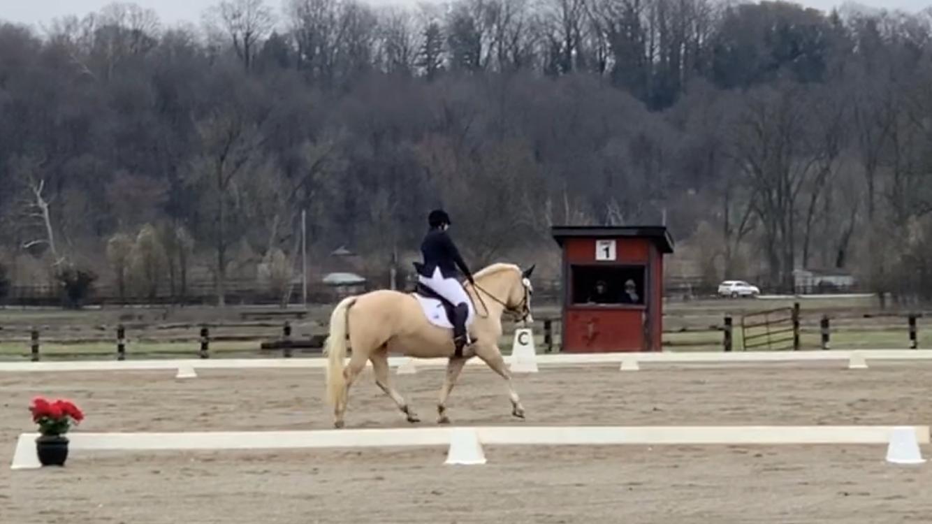 2020 Covered Bridge Pony Club CT – Dressage