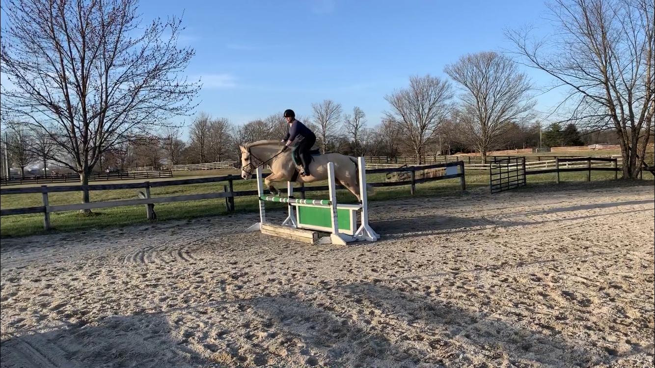 May Green Jump